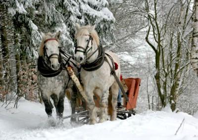Weihnachten im Salzburger Land