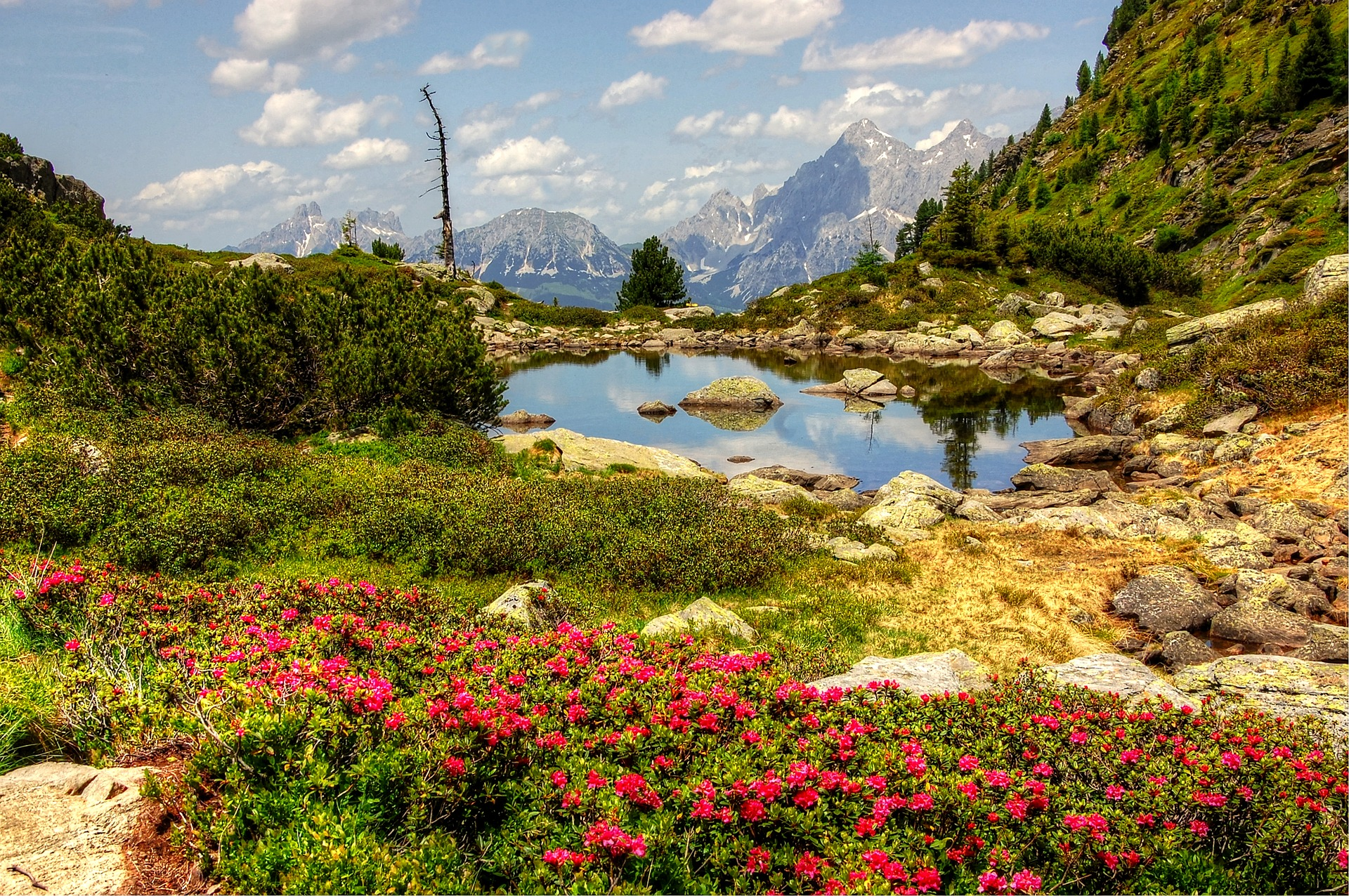 gasselsee-3516071_1920